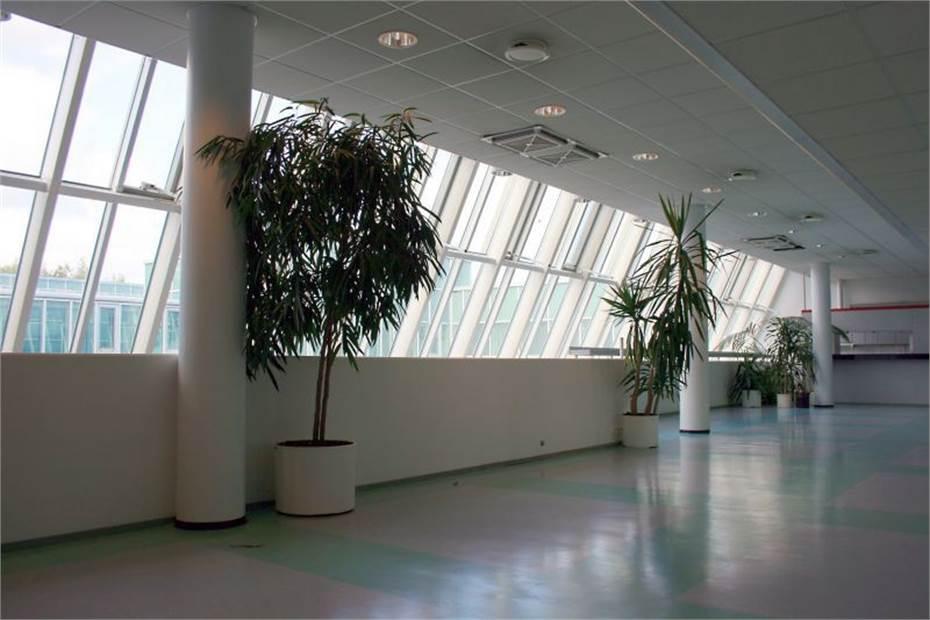 Finnoonniitty, Nöykkiö, Espoo