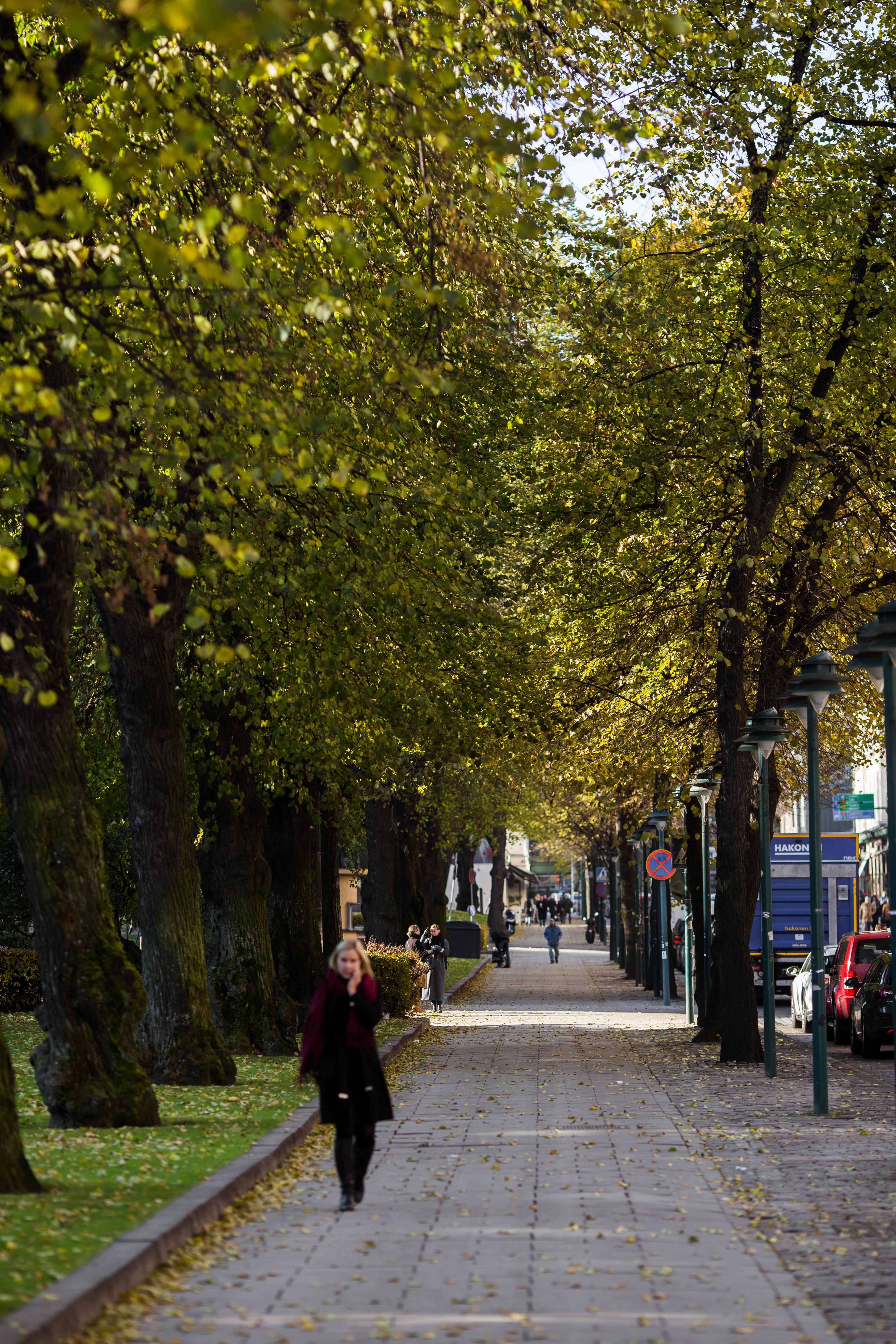 Mikonkatu 2, Kluuvi, Helsinki