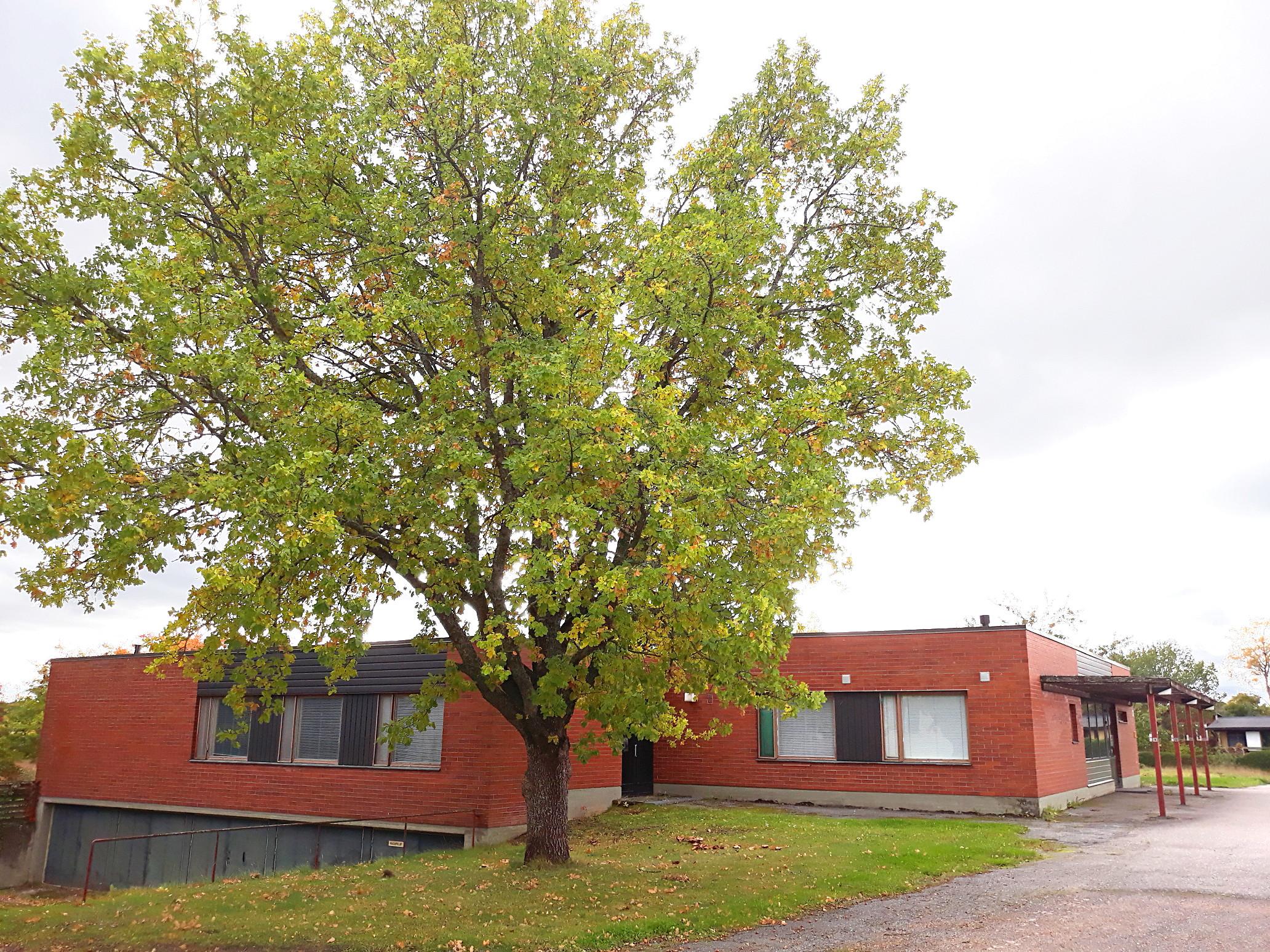 Toimitila, Hämeen Härkätie 617, Tarvasjoki, Lieto